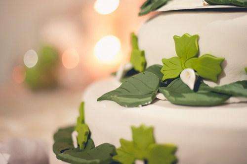 Original tarta para bodas con motivos de naturaleza.