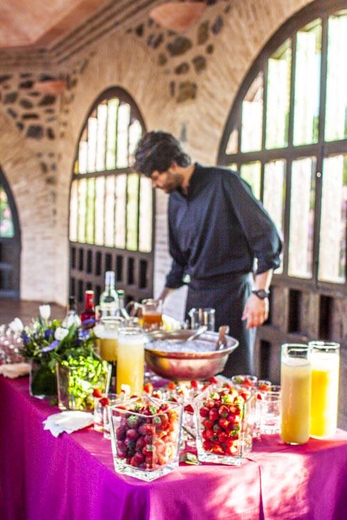 Sorprende en tus celebraciones con unos deliciosos cocktails, recién hechos.