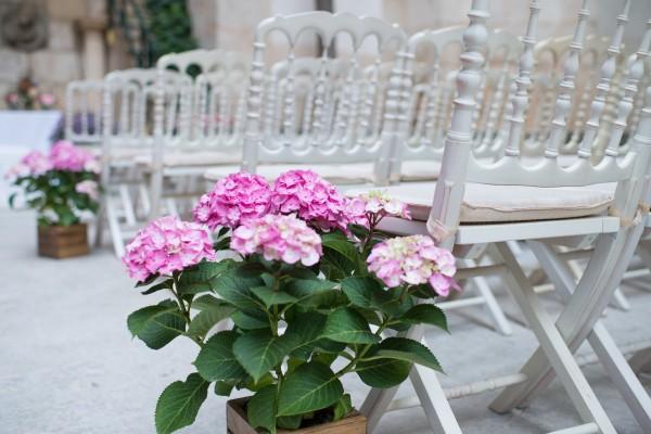 ceremonia boda lupiana laurel catering