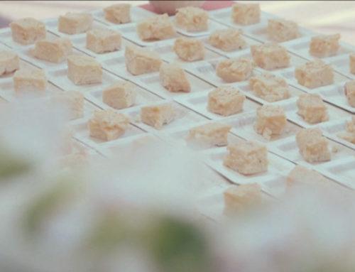 Vídeo Laurel Catering Evento Pierre Fabre