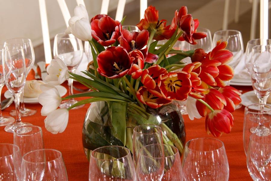 Flores-tulipan-naranja