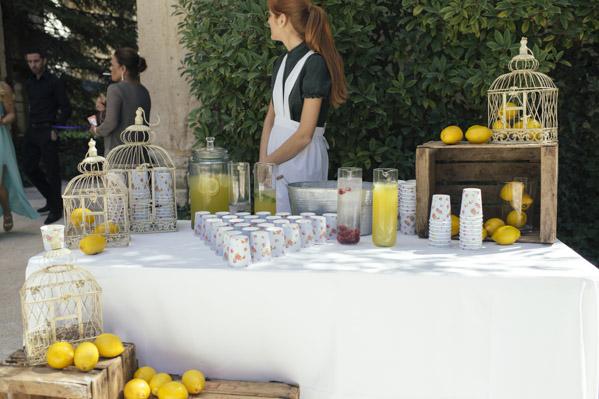 puesto de limonada maria y gabi