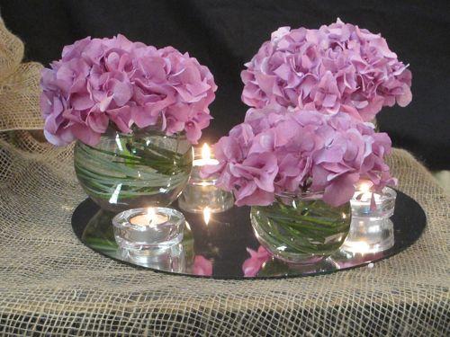 flores hortensia morada bajo